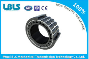 SL045014-PP Double Row Full Complement Cylindrical Roller Plastic Bearing