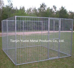 Dog Kennel or Dog Cage for Sale/Large Dog Cage Metal Pet Cat Play Pen Puppy Kennel/Large Welded Dog Kennel pictures & photos