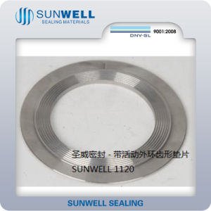 Outlet Center: Sunwell Kammprofile Gasket with Loose Outer Ring pictures & photos