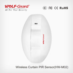 Hot Sale Professional Wireless/Wired Directed Curtain Detector pictures & photos