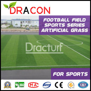 50mm Indoor 5-Player Futsal Artificial Turf (G-5005) pictures & photos