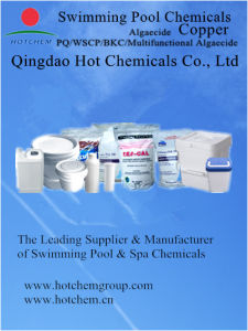 High Quality Factory Supply Various Packages Pool Algaecide for Sale pictures & photos