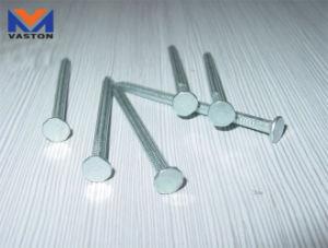 Concrete Steel Nails pictures & photos