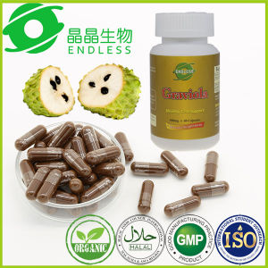 OEM Available GMP Certificate Graviola Fruit Extract Capsule for Anti-Cancer pictures & photos