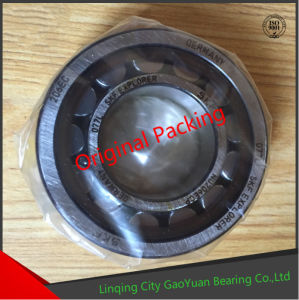Original Packing SKF Cylindrical Roller Bearing NU202ECP pictures & photos