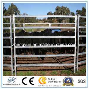 Galvanized Heavy Duty Steel Fence Panel/Cattle Panel pictures & photos