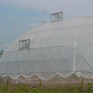 Low Cost Modern Steel Space Truss Frame Geodesic Dome House for Sale pictures & photos