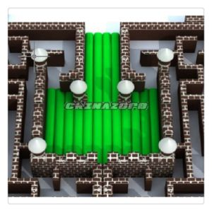 Best Sale Inflatable Maze with Snow Globe at Factory Price pictures & photos