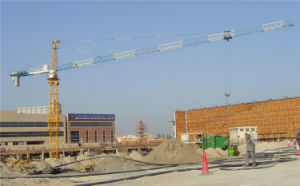 Construction Machinery Made in China by Hsjj-Qtz5010 pictures & photos
