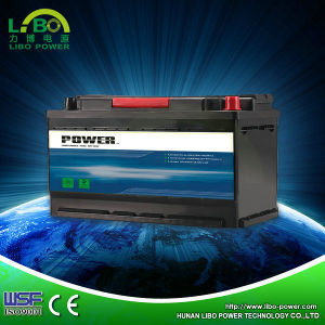 Lead Acid Type Maintenance Free Battery