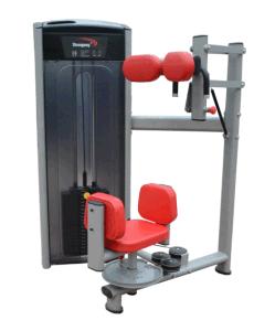 Fitness Equipment / Gym Equipment / Torso Rotation (SA21) pictures & photos