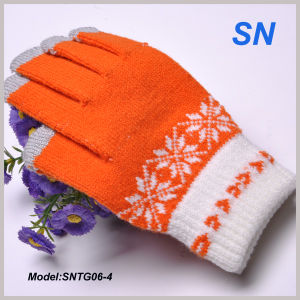 2015 Fashion Snowflake Touchscreen Texting Itap Gloves (SNTG06-4) pictures & photos