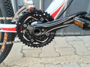 2017 Hot Sales Carbon Fiber Mountain Bicycle with 30 Speed pictures & photos