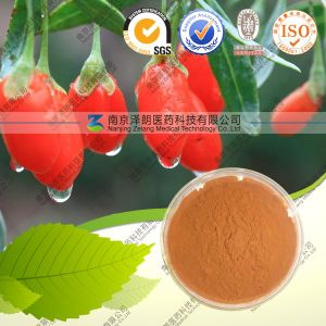Natural Supplement Wolfberry Extract Powder pictures & photos