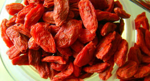Ningxia Goji Berry Supplier pictures & photos