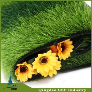 Professional Elastic Artificial Grass Turf for Soccer Pitch pictures & photos