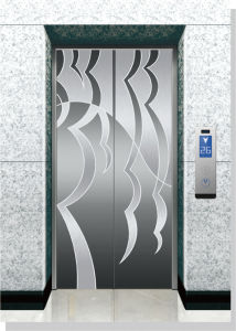 Machine Room-Less Passenger Elevator with Stainless Steel Hairline pictures & photos