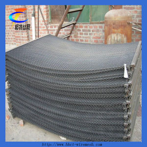 Sale of High Quality Crimped Wire Mesh Sheet pictures & photos