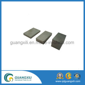 Free Sample N50 Neodymium Permanent Magnet pictures & photos
