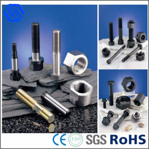 High Tensile Fastener Bolts Customized Steel Bolt and Nut pictures & photos