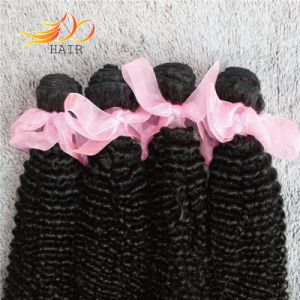Quality Certification Available 8A Kinky Curl Indian Virgin Human Hair Wefts pictures & photos