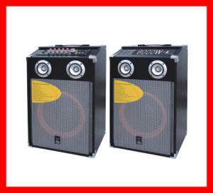 Professional Stage Active Speaker (Q10)
