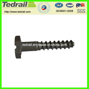 Railwayscrew Spike with Slotting Head pictures & photos