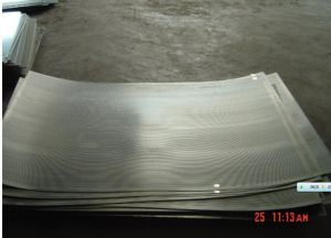Perforated Mesh pictures & photos