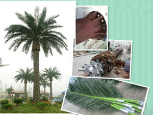 Disguised Palm Tree Tower / Pine Tree Tower for Communication pictures & photos