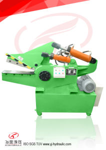 Excellent Hydraulic Metal Shear Machine for Sale (Q08-100) pictures & photos
