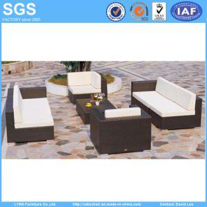 Patio Furniture PE Rattan Combination Sofa Set pictures & photos