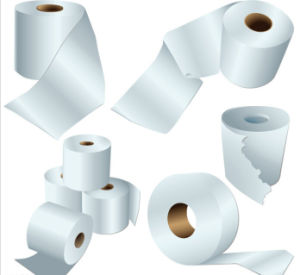 Toilet Roll (recycled or virgin) pictures & photos
