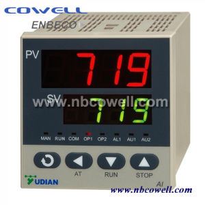 DC AC 12V Digital Temperature Controller Thermostat pictures & photos