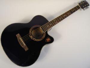 40 Inch Acoustic Guitar (FS-4011C-BK)