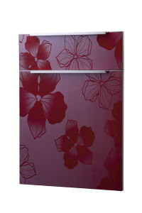 Customized Doors for Kitchen (customize size) pictures & photos