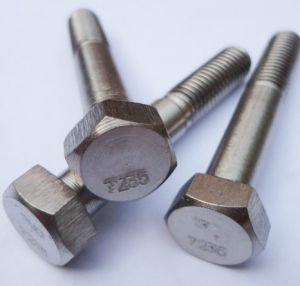 Ti 7 Bolt / Titanium Bolt / Ti Alloy Bolt pictures & photos