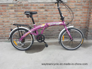 Folding Bike (WT-20411) pictures & photos