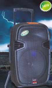 Professional Audio Speaker Bluetooth Battery Speaker F413 pictures & photos