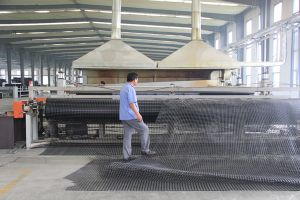 HDPE Geonet of Extruded Net pictures & photos