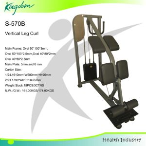 Fitness Equipment/Body Building/New Stand Leg Curl pictures & photos