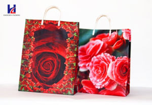 Non-Woven Fabric Bag with Plastic Handle pictures & photos