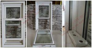 American Vertical Sliding Windows (BHP-LW06) pictures & photos