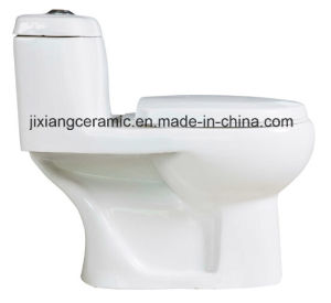 Wc Ceramic One-Piece Washdown Toilet 300mm pictures & photos
