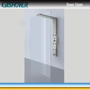 Bathroom Rain Shower Panel & Shower Screen Combo (LNH20-08) pictures & photos
