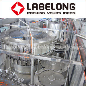 China Manufacture Automatic Fresh Juice Bottle Filling/Packing Machine pictures & photos