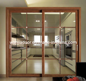Latest Designs Aluminum Sliding Door (WJ-ALU-D-010)