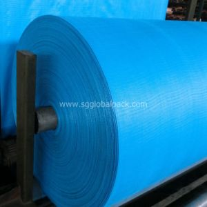 OEM PP Woven Fabric pictures & photos