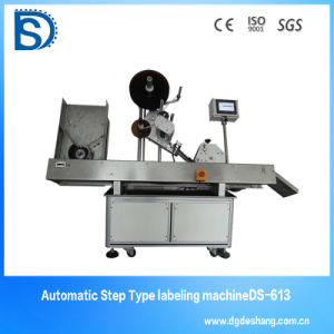 Ds-631 Automatic Aqua Water Bottle Packing Machinery