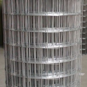 The Best China Supplier Galvanized Welded Wire Mesh Panel (ISO 9001) pictures & photos
