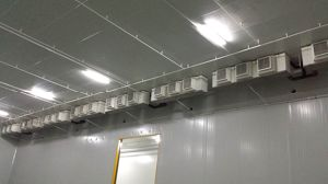 Edible Mushroom Special Central Control Chiller pictures & photos